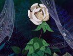 Alice-disneyscreencaps com-3339