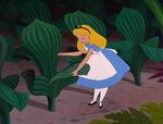 Alice-in-wonderland-disneyscreencaps.com-3091