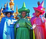 0171 Fairies Sleeping Beauty Castle CHOC Walk October 14 2012