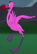 Flamenco rosa AiW
