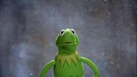 GagaMuppets-KermitMemories