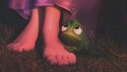 Pascal.Tangled