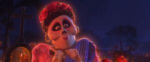 Coco Rosita