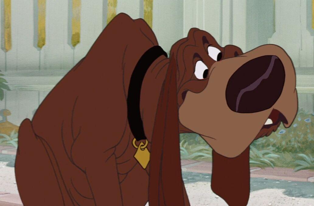 Disney Bloodhound