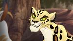 The-golden-zebra (474)