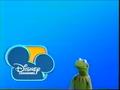 Kermit's another DC bumper