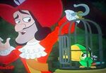 Hook's Parrot