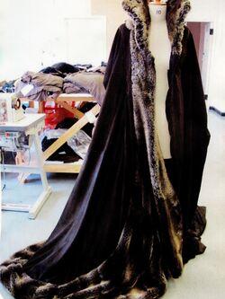 Maleficentwintercloak
