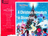 A Christmas Adventure in Disneyland