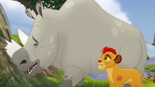 Kion en de neushoorn