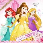 Disney-Princesses-disney-princess-39241465-1024-1024