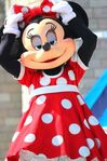 Minnie in Dream Along with Mickey