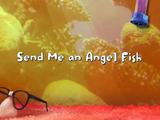 Send Me an Angel Fish