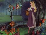 Los Animales del Bosque (Sleeping Beauty)
