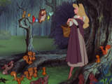Los Animales del Bosque (Sleeping Beauty)
