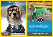 BDawg Card