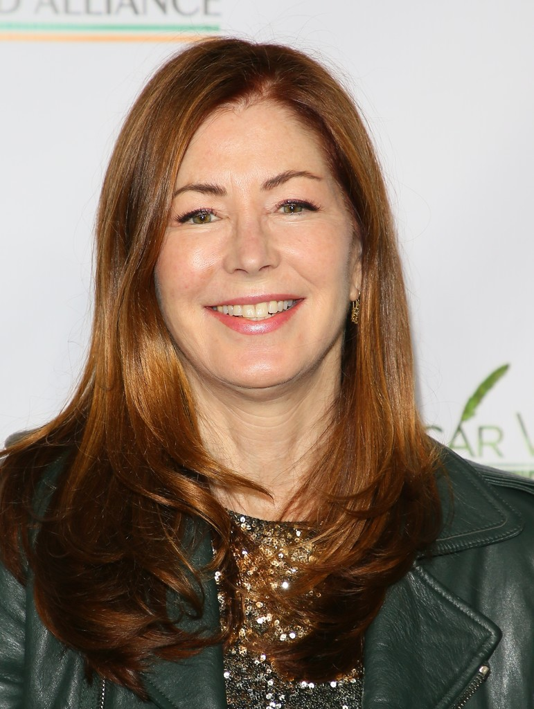 2019 Dana Delany nude (92 photos), Pussy, Is a cute, Instagram, butt 2006