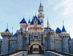 Sleeping Beauty Castle DLR