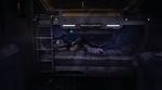 Zeb-sleeping
