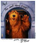 Bear autograph