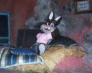 Brer rabbit splash
