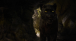 Jungle Book 2016 135