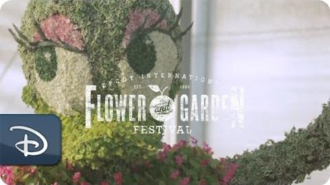 Fresh Epcot With Eric Darden - Horticulture Manager