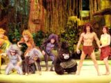 Tarzan: The Encounter