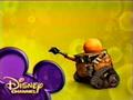 WALL-E Wand ID
