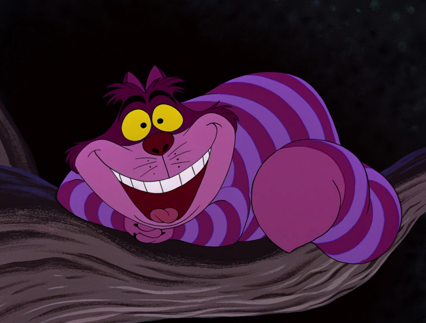 Image result for alice in wonderland cheshire cat disney