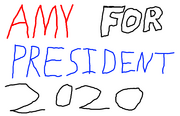 Amy for President 2020