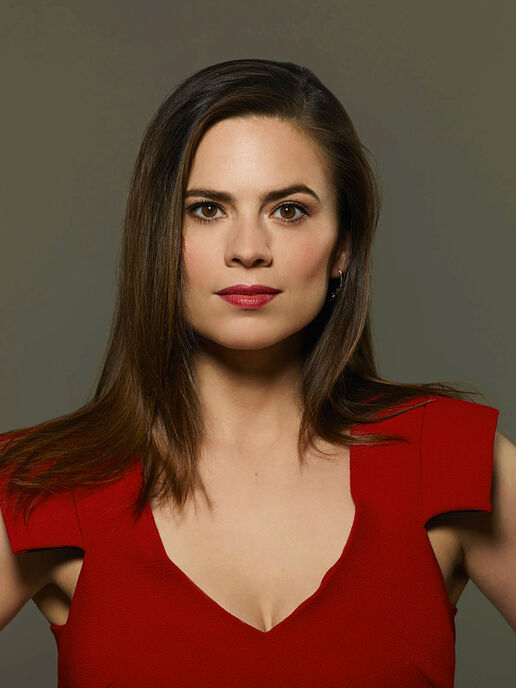 Hayley Atwell (born 1982 (dual British and American citizenship) naked (96 pics) Selfie, 2015, braless