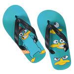 Perry Flip-Flops