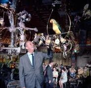 Enchanted Tiki Room and Walt Disney 2