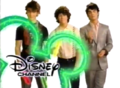 Original Jonas Brothers Wand ID (2007)