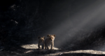 The Lion King (2019 film) (8)