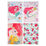 Clear File Ariel & Flander, Sebastian MERMAID LAGOON