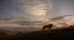 The Lion King (2019 film) (16)