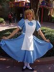 Alice HKDL