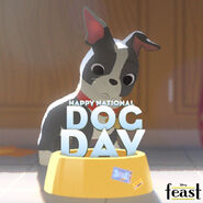 HappyNationalDogDayFeast