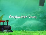 Freshwater Lives