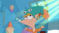 Perry on Phineas's Head