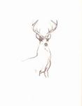 Bambi sketchbook 060