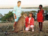 Cheetah-4-1