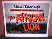 The african lion milotte original title lobby card