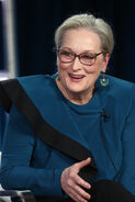 Meryl Streep Winter TCA Tour19