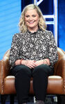 Amy Poehler Summer TCA Tour