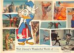 Wonderfulworldofcolor