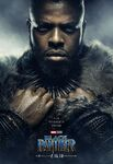 Black Panther Character Posters 11