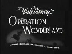 OperationWonderland3